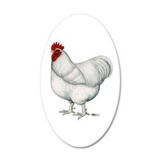 Orpington White Rooster 35x21 Oval Wall Decal