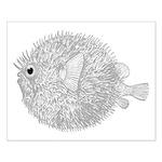 Blowfish Small Poster