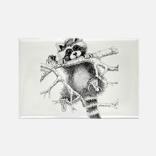 Raccoon Play Rectangle Magnet