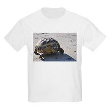 Shelly the tortoise T-Shirt