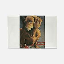 Dauschound Dog Doxie Weiner Dog Rectangle Magnet