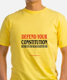 DEFEND YOUR CONSTITUTION T
