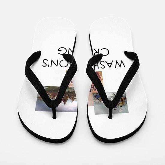 ABH Washington's Crossing Flip Flops