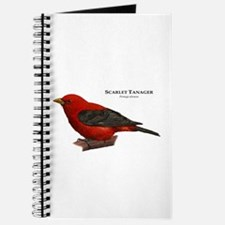 Scarlet Tanager Journal