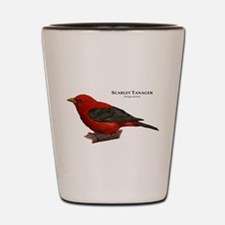 Scarlet Tanager Shot Glass