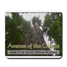 Founder's Tree - Avenue of the Giants Mousepad