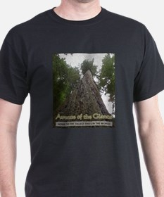 Founders Tree Tall - Avenue of the Giants T-Shirt
