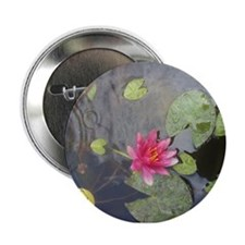 """Hot Pink Water Lily 2.25"""" Button"""