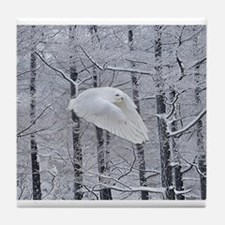 Snowy Owl, Praying Wings Tile Coaster