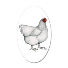 Orpington White Hen 20x12 Oval Wall Decal