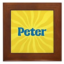 Peter Sunburst Framed Tile