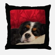 Cavalier King Charles Tri-Color Throw Pillow