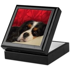 Cavalier King Charles Tri-Color Keepsake Box