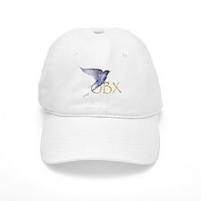 purple martin OBX Baseball Cap