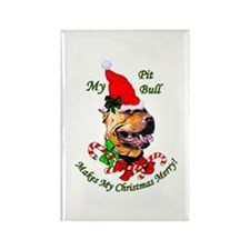 American Pit Bull Terrier Rectangle Magnet (100 pa