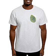 Grey Chlorophyll T-Shirt