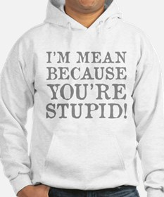 I'm mean because you're stupid! Hoodie
