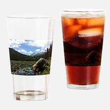 Fern Lake, Colorado Drinking Glass