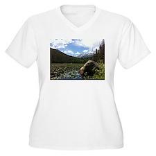 Fern Lake, Colorado T-Shirt