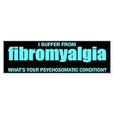 Fibromyalgia... Bumper Sticker