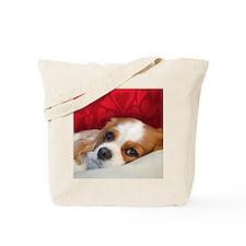 Cavalier King Charles Tote Bag