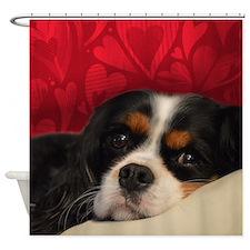 Cavalier King Charles Shower Curtain