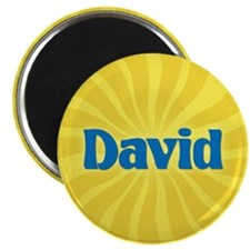 David Sunburst Magnet