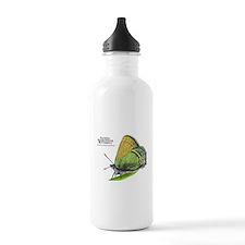 Sandia Hairstreak Butterfly Water Bottle