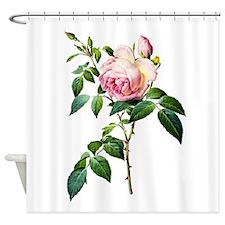 Pierre-Joseph Redoute Rose Shower Curtain