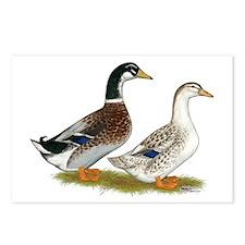 Appleyard Silver Ducks Postcards (Package of 8)