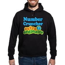 Number Cruncher Extraordinaire Hoodie