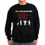 Four Stages of Life Sweatshirt (dark)