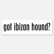 Got Ibizan Hound? Bumper Bumper Bumper Sticker