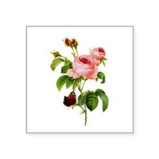 "Pierre-Joseph Redoute Rose Square Sticker 3"" x 3"""