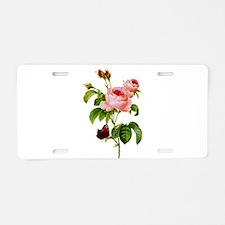 Pierre-Joseph Redoute Rose Aluminum License Plate
