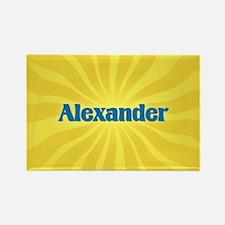 Alexander Sunburst Rectangle Magnet
