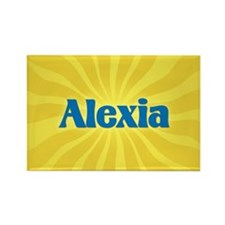Alexia Sunburst Rectangle Magnet