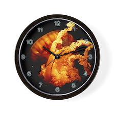 Wall Clock jellyfish