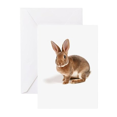 Somebunny Loves You Greeting Cards (Pk of 10)
