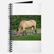 New Forest Pony Journal