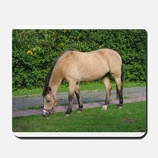 New Forest Pony Mousepad