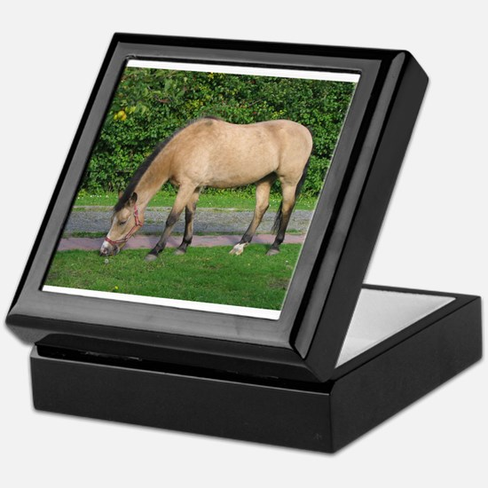 New Forest Pony Keepsake Box