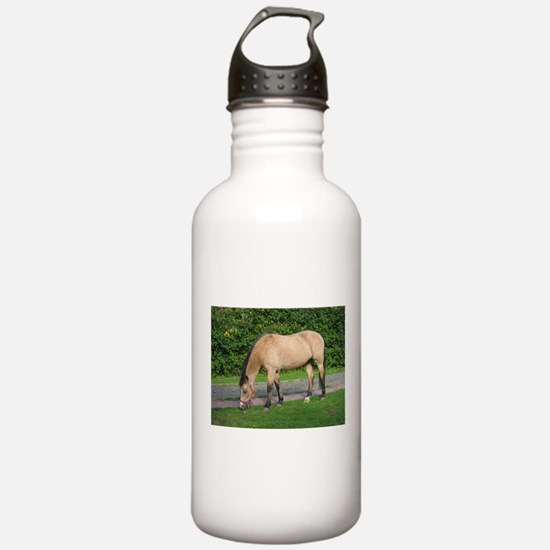 New Forest Pony Water Bottle