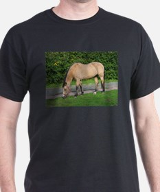 New Forest Pony T-Shirt