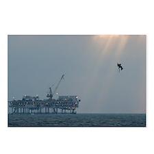 Pelican Dive Postcards (Package of 8)