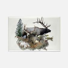 Buck deer bull elk Rectangle Magnet