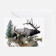 Buck deer bull elk Greeting Card
