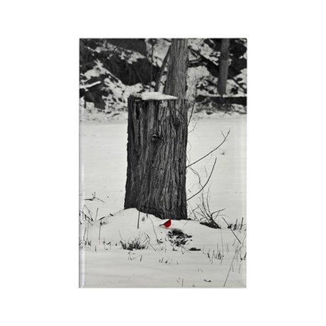 Cardinal in the snow Rectangle Magnet