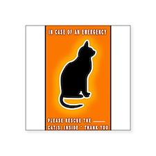 Cat Emergency Sticker Orange Sticker