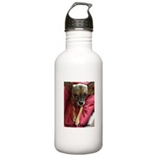 chihauhau Water Bottle